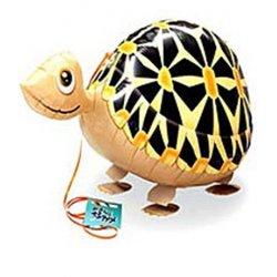 Walking Animal Turtle